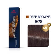 Koleston Perfect 6/75 ME+ Dark Blonde/Brown Red-Violet Permanent